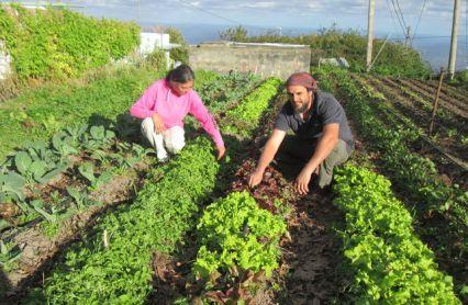 Carlos_y_Conchi-agricultores_ecologicos-Puntallana_EDIIMA20150108_0783_15