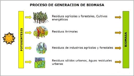 Energia_Biomasa