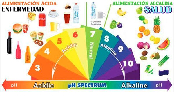 Alimentos que causan acidez en el cuerpo